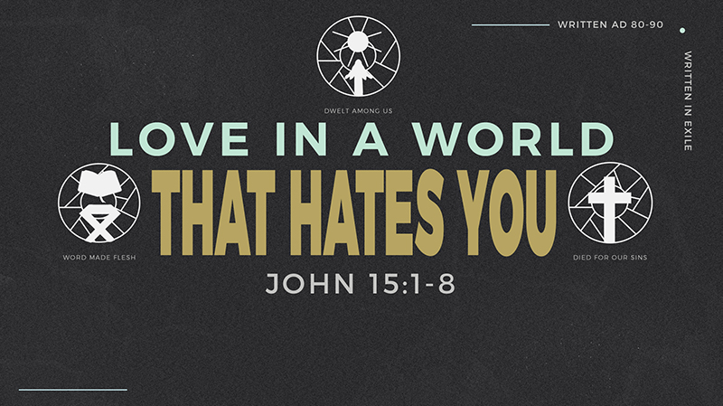 Love In A World That Hates You
