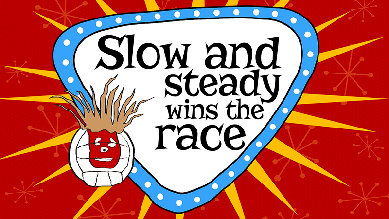 Title Slide for July 22nd, 2018, Slow and Steady Wins The Race